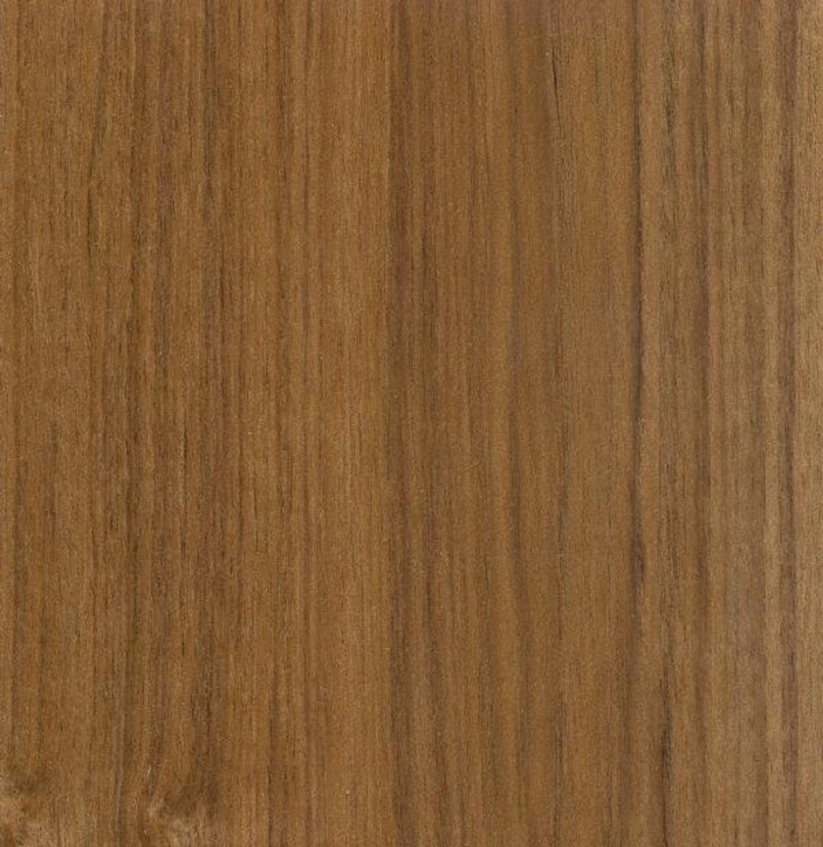 Straight grain of teak wood