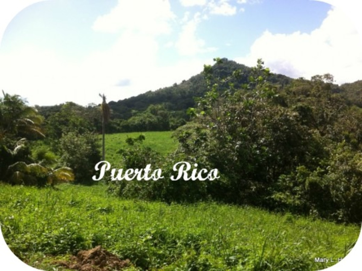 The countryside of Puerto Rico