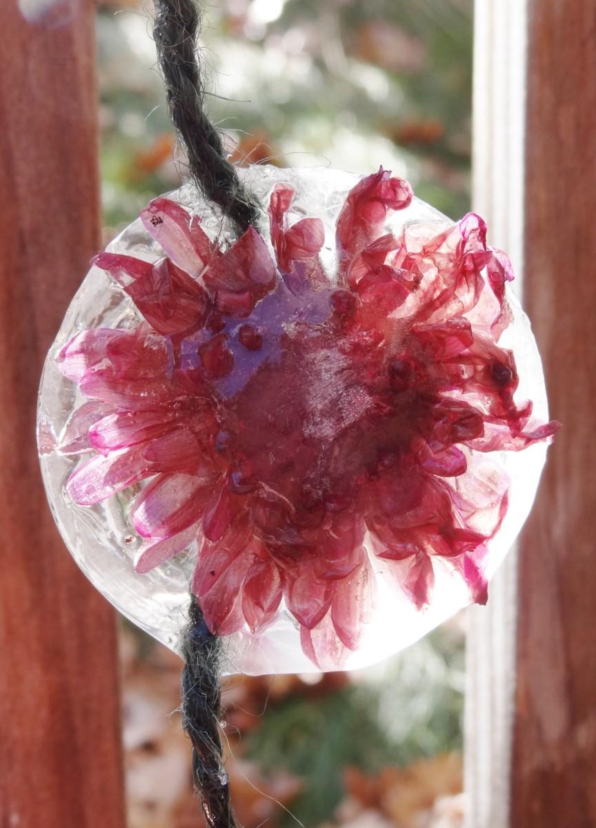 A flower frozen in time.