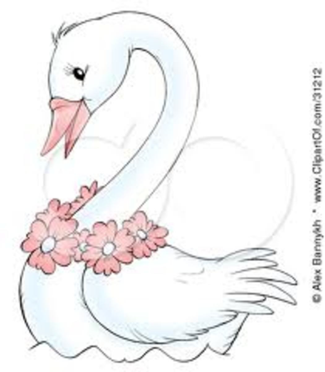 white-and-black-swan-tattoos-and-history-swan-tattoo-meanings