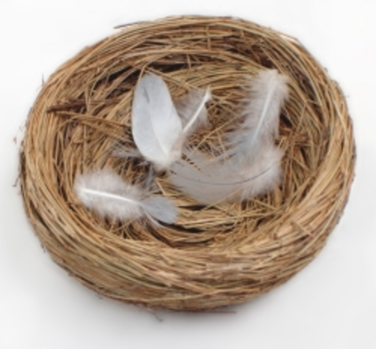 The Psychology Behind Empty Nest Syndrome