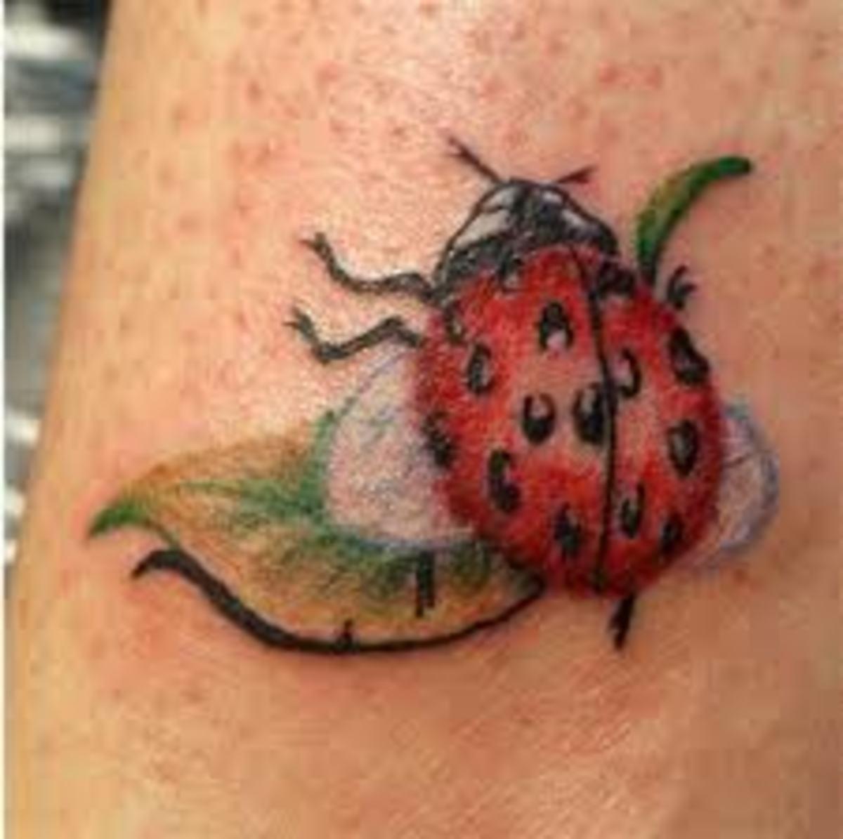 ladybug-tattoos-and-meanings-ladybug-tattoo-designs-and-ideas