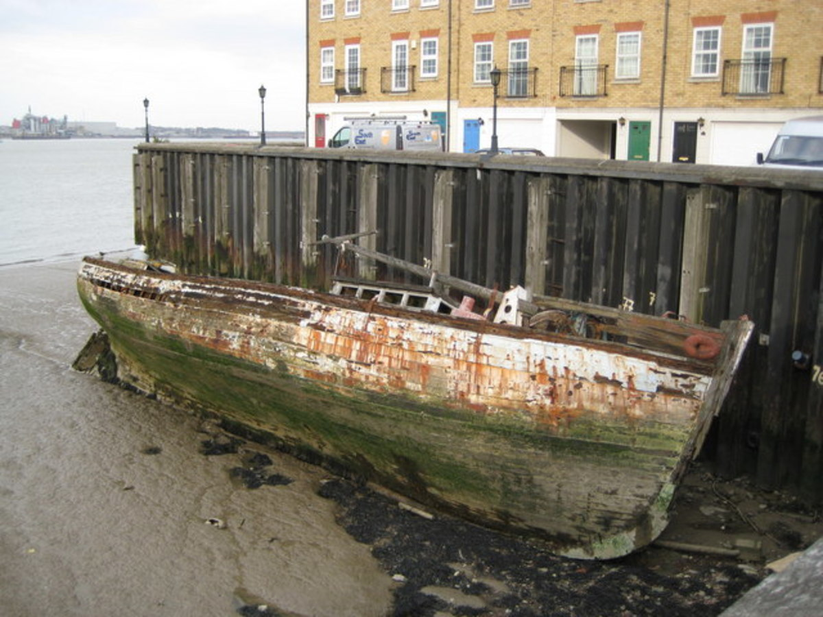 Ships hulls can be preserved by the mud along the foreshore