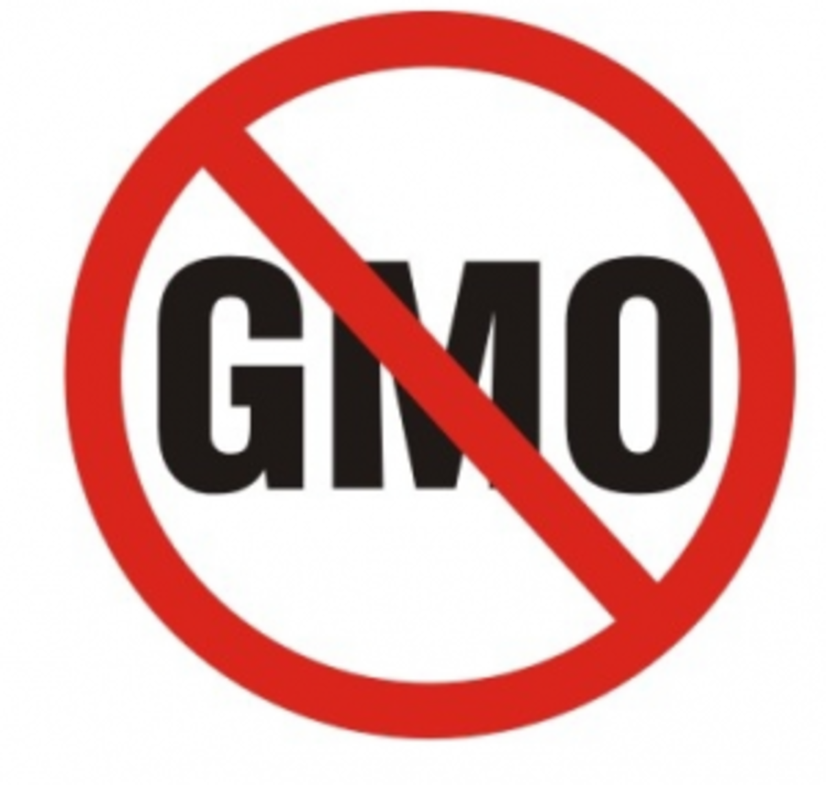 8 Steps to Take Action Against Genetically Modified Organisms in Food: No More GMOs