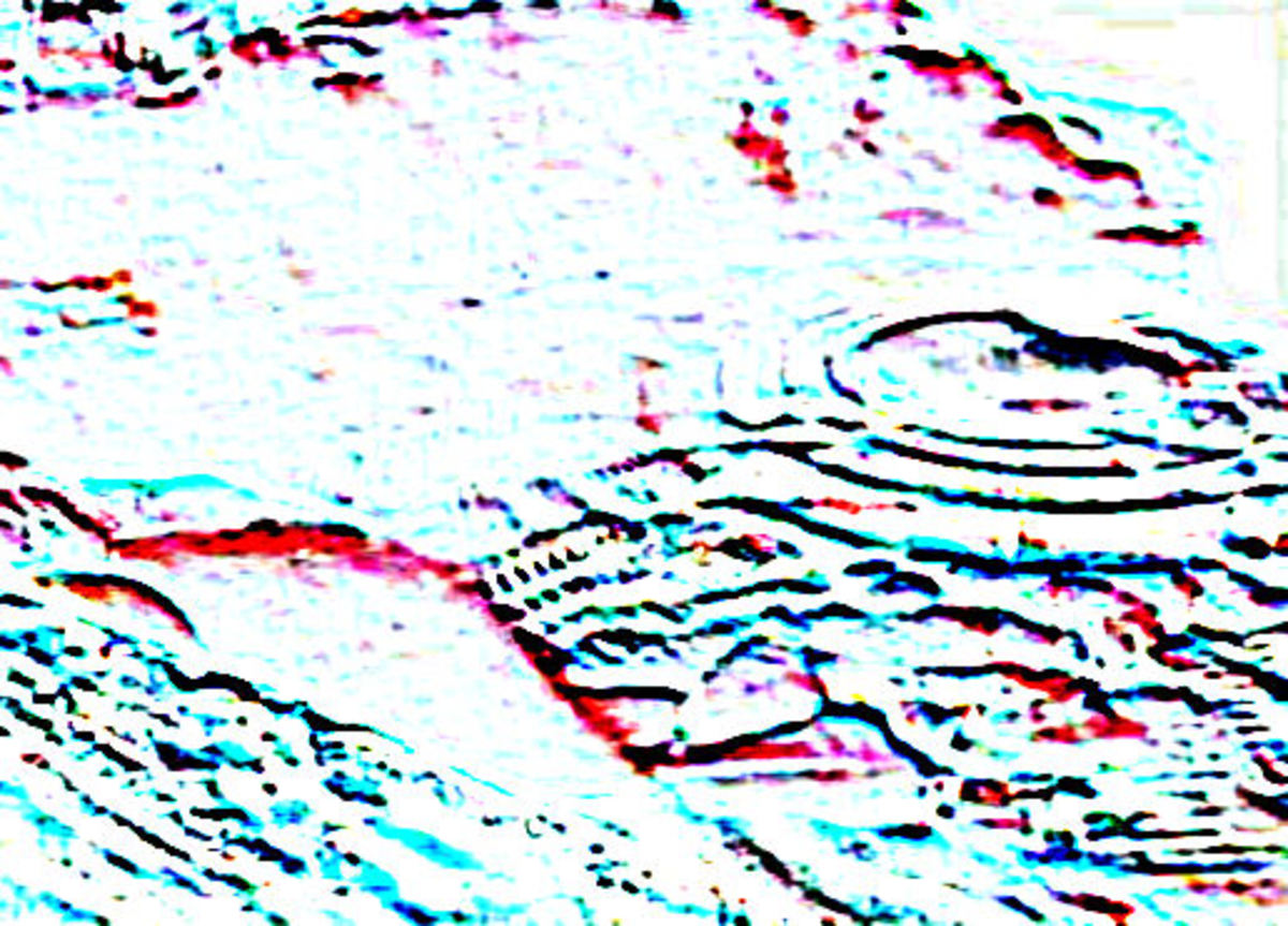 Thermal/Acoustic Baltic Sea UFO Density Image - *See composite component image citation