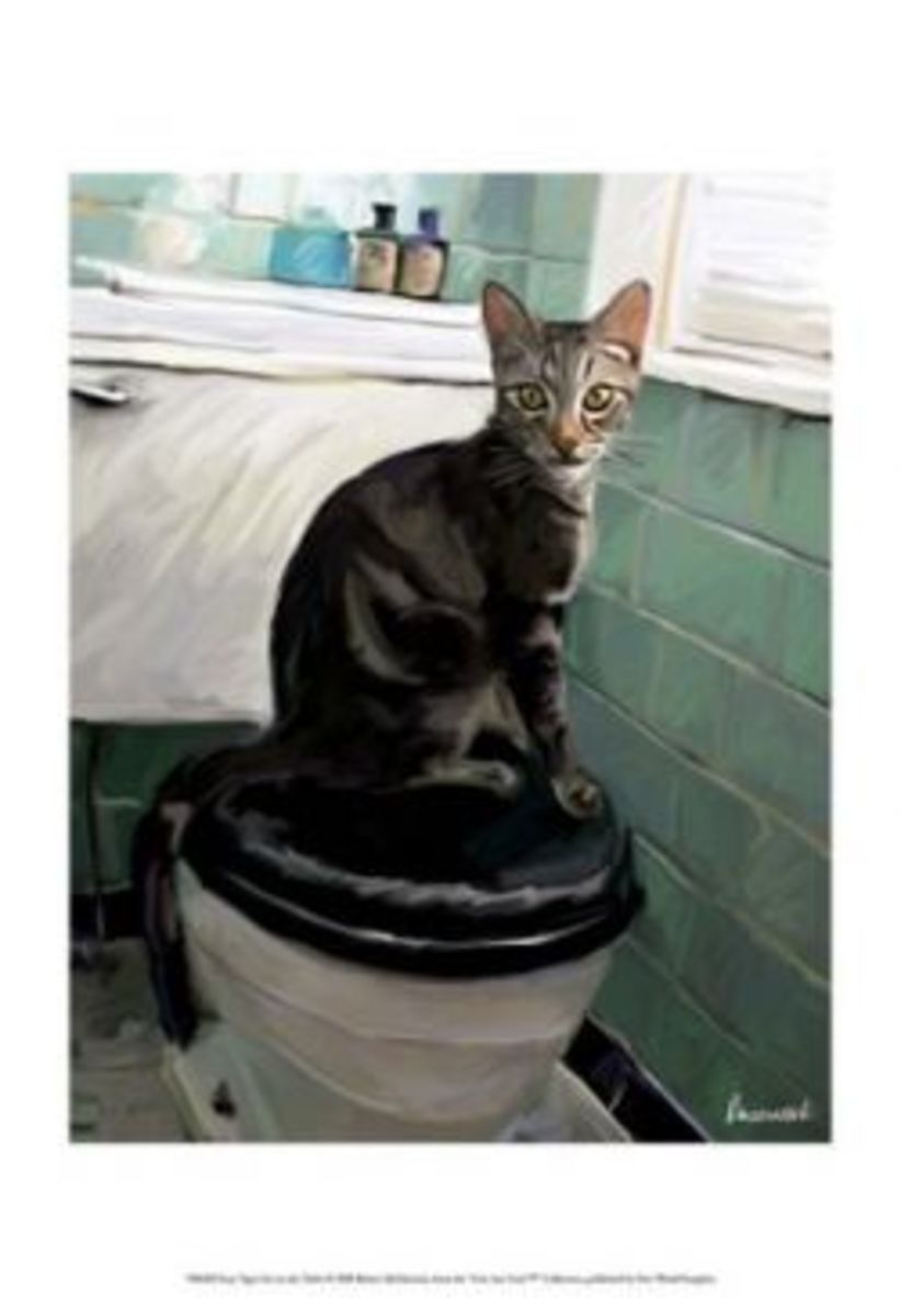 Gray TIger On The Toilet ~ Image: Allposters