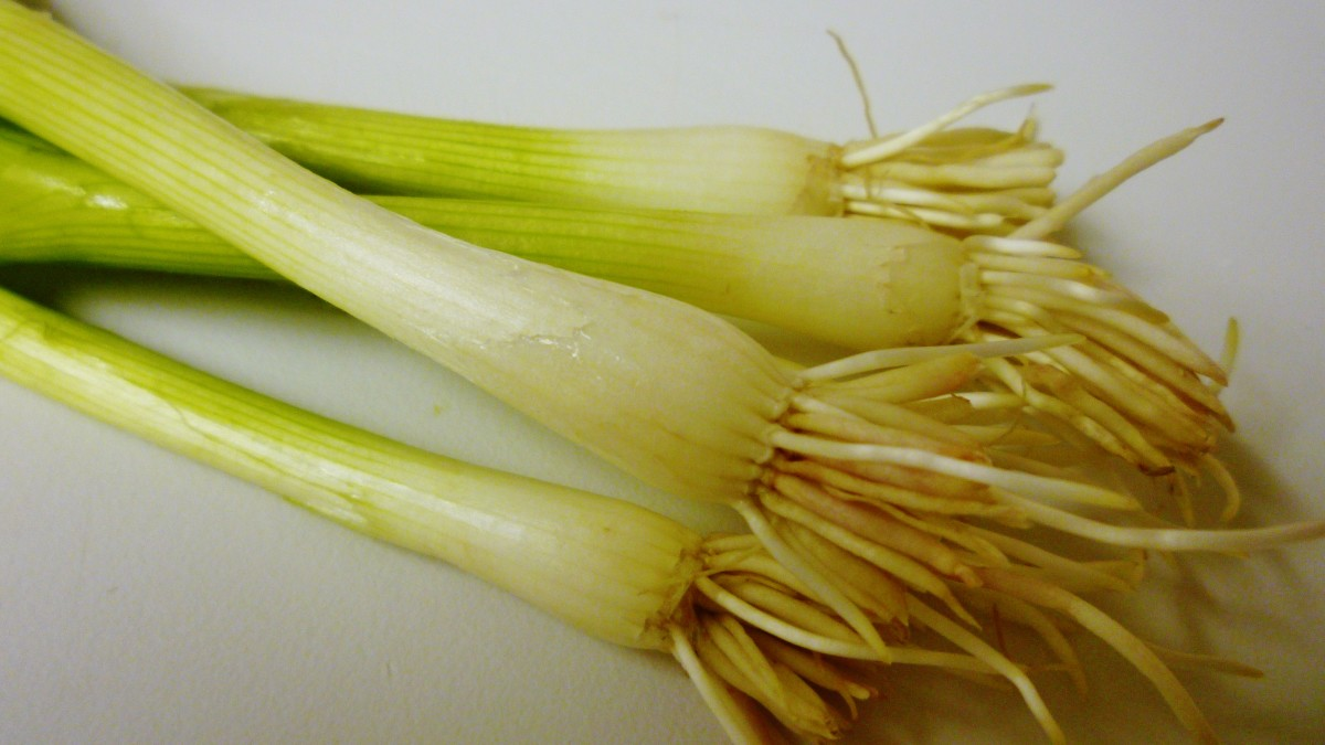 Green table onions