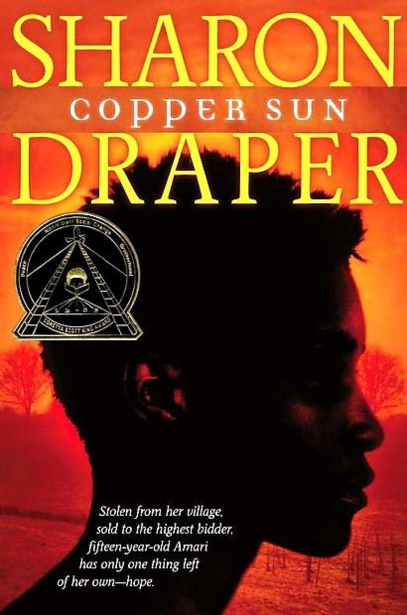 A Short Essay on Amari in Copper Sun by Sharon Draper