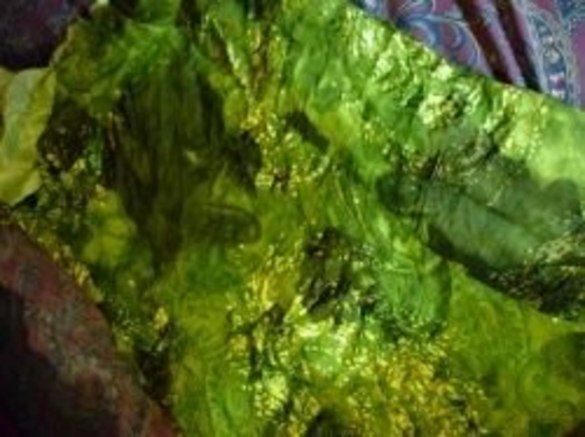 My Esmeralda Fabric Skirt Protion