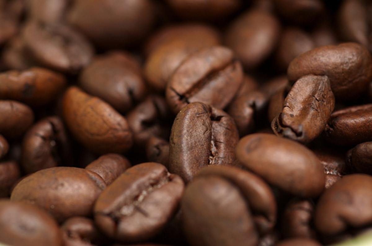 Top 10 Best Coffee Producing Countries in The World