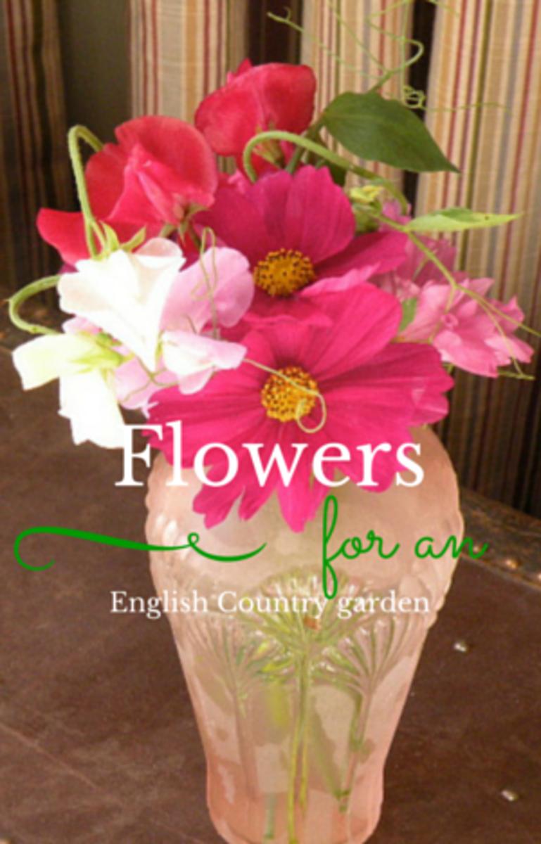 10-flowers-i-love-in-my-cottage-garden