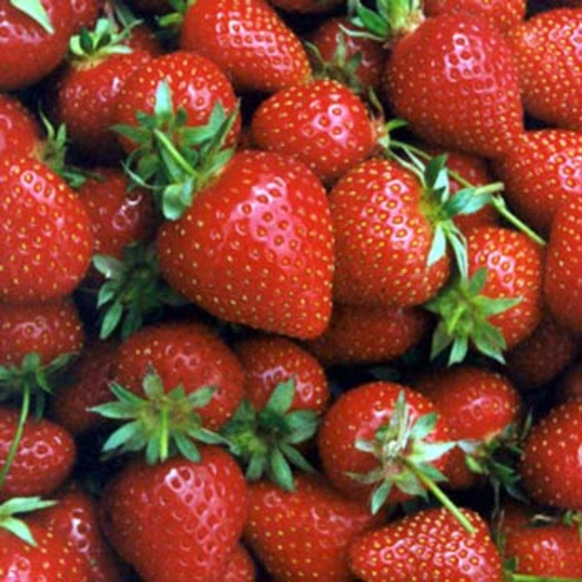 Strawberry Aggregate Fruit