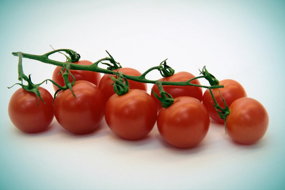 Tomato Berry Fruit