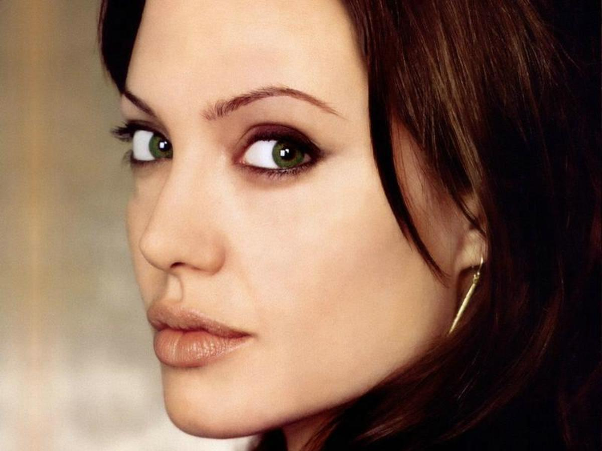 A harsher view of Angelina Jolie.