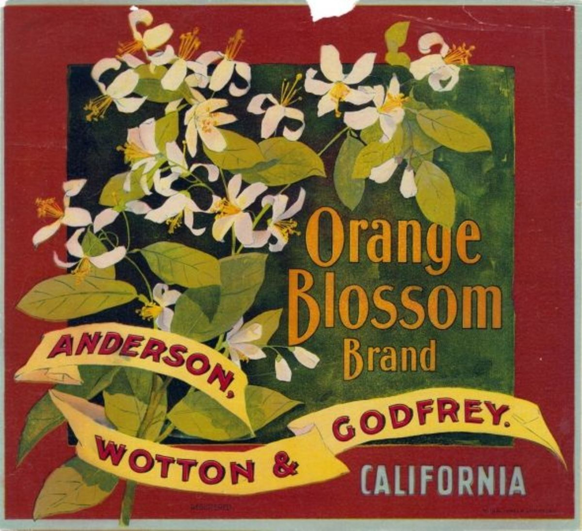 An orange crate label with orange blossums - believed public domain, click for more info
