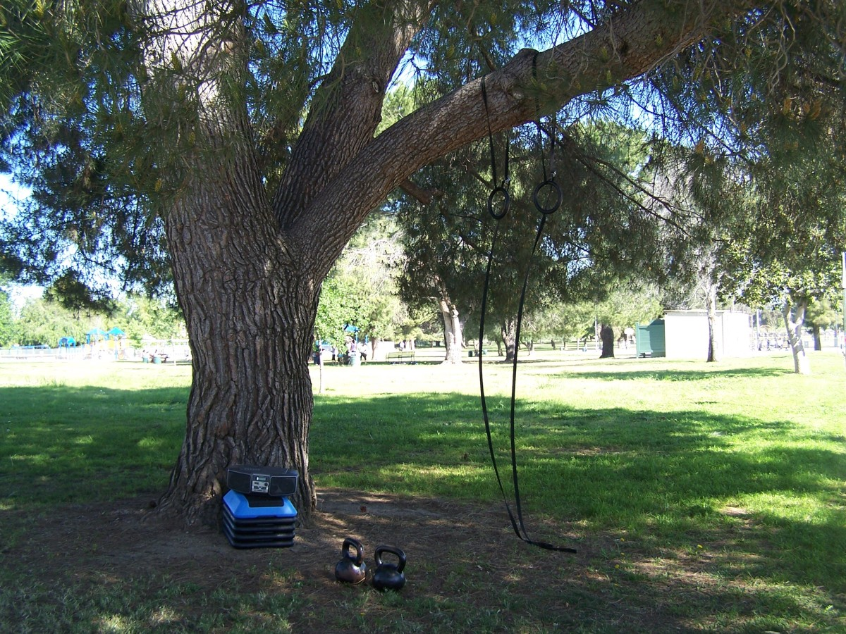 richmans-gym-circuit-training-in-the-great-outdoors