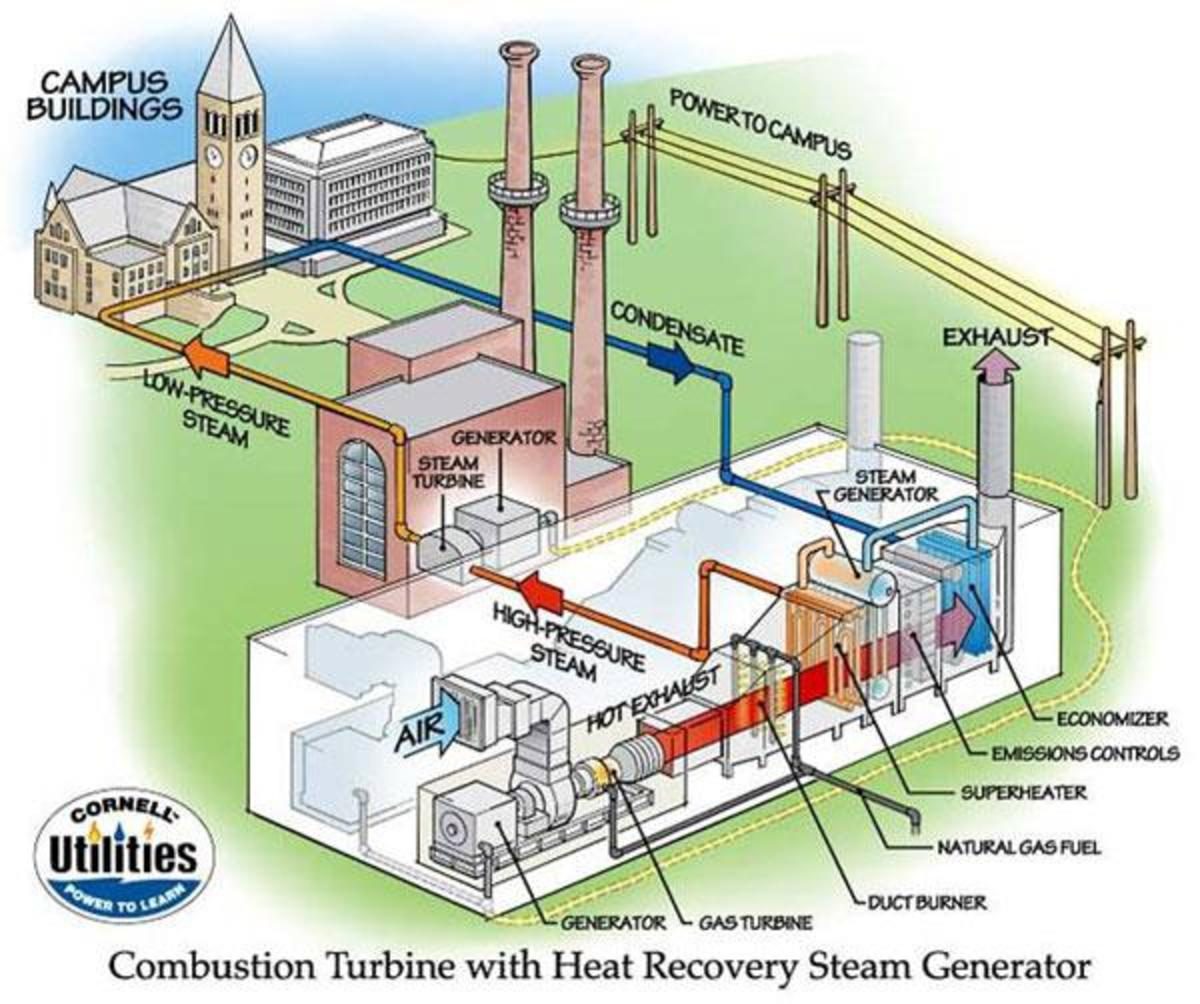 A typical steam powered CHP system.