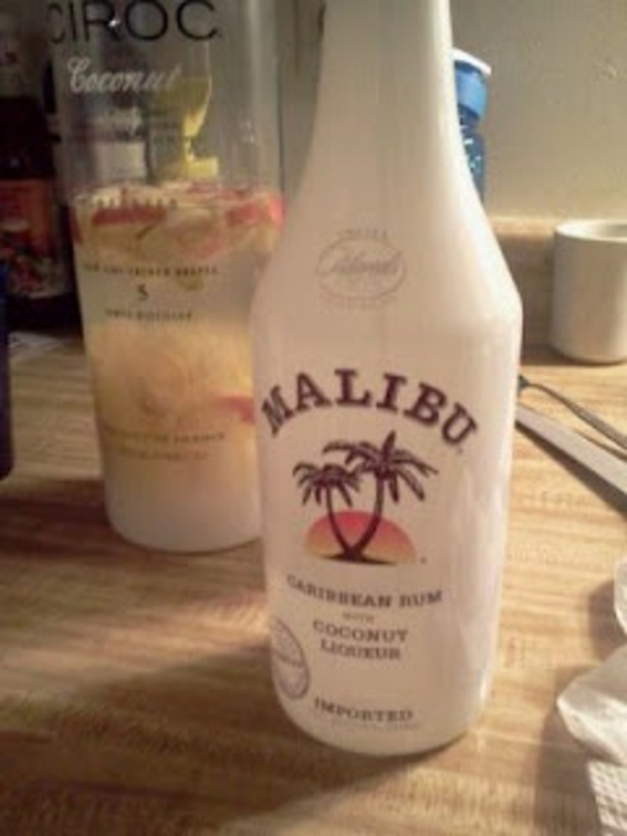 After the Ciroc Base with Fruits, Poured in 500ML worth of Malibu Rum