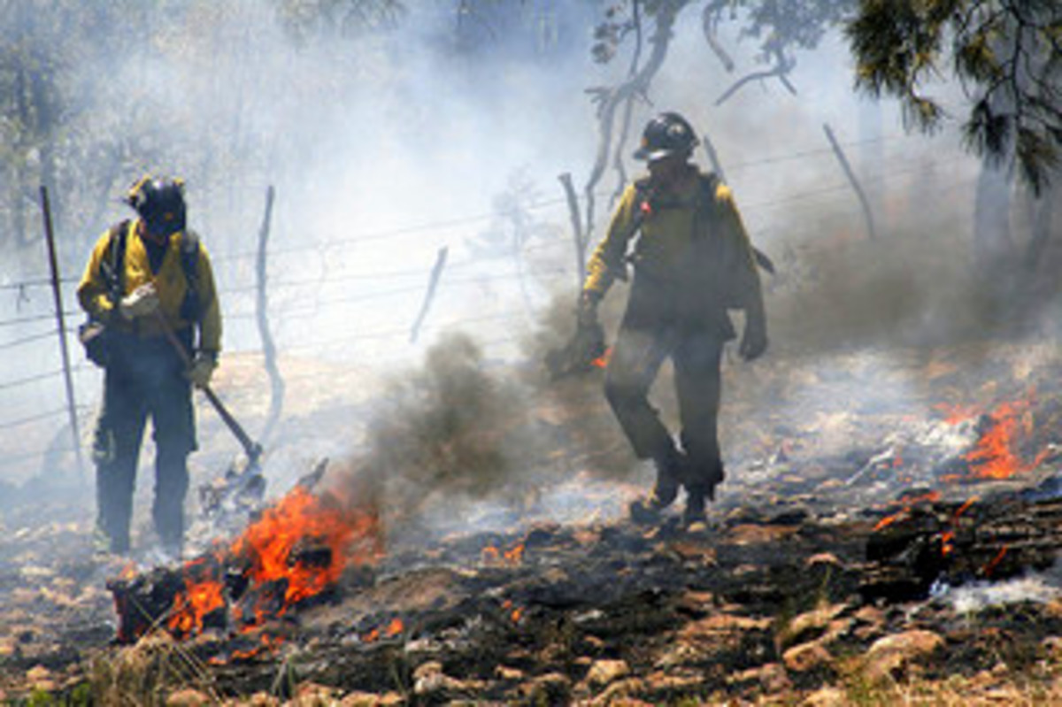Hotshot crew members from U.S. Forest Service, South-western Region, Kaibab National Forest.