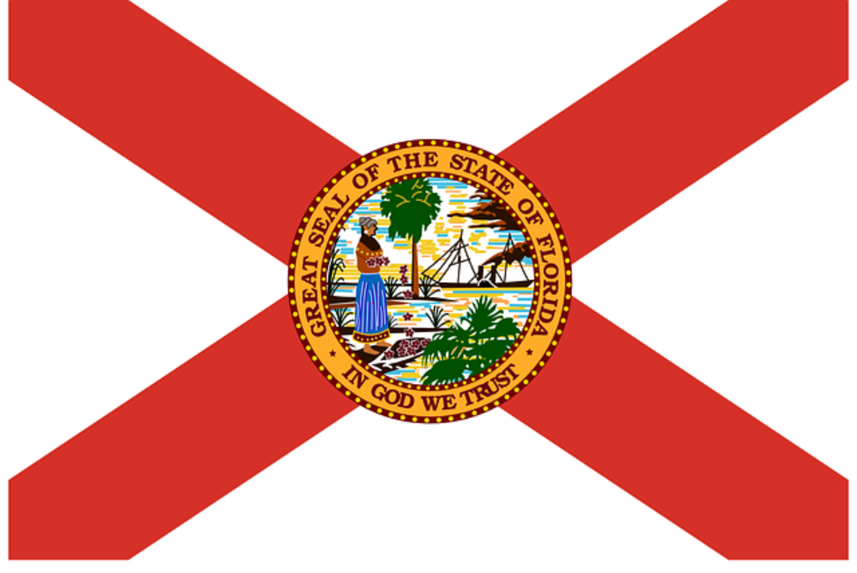 Florida's flag: a red St. Andrew's cross on a white background, with the state seal in the center, which shows a Semiole woman spreading flowers, a sun, a steamboat, shoreline and palm trees. The design was adopted in 1900 and updated in 1985.