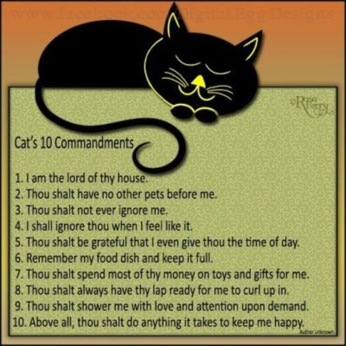 CATmandments