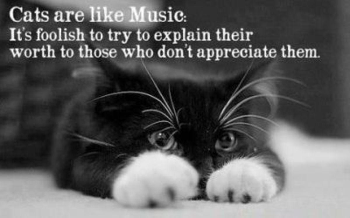 Learn to appreciate them