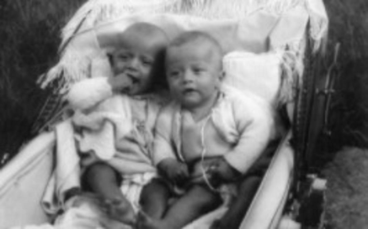 robin-hugh-gibb-cbe-1949-2012