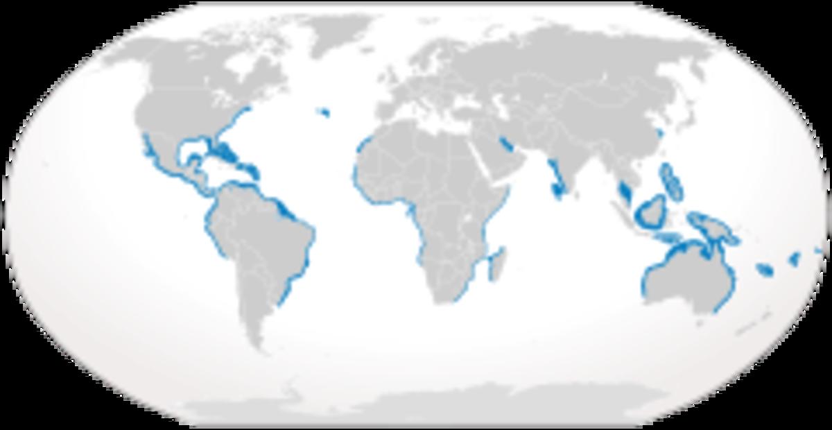 bull shark range/habitat