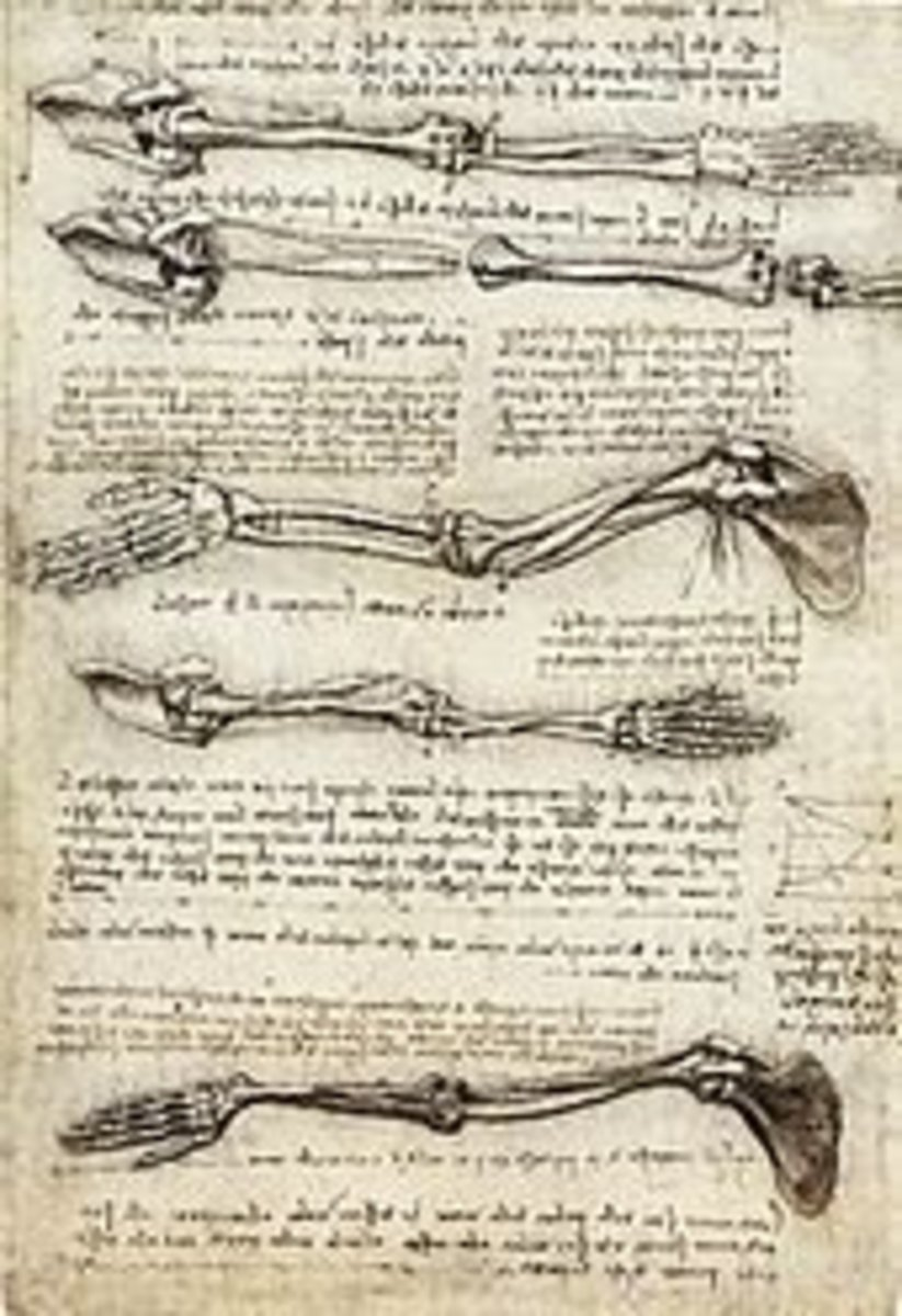 Human Anatomy. He actually dissected corpses, which got him into a bit of trouble. His detailed drawings were so accurate and detailed that they have been used by medical students.