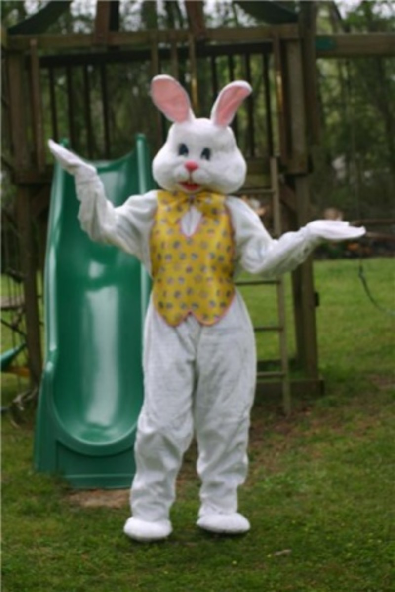 All Types of Bunny Costumes