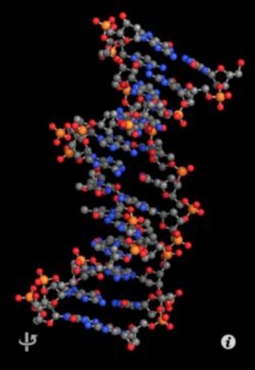 Molecules app for iPhone, Ipad