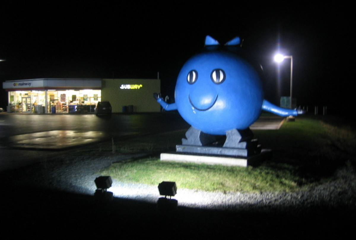 This Giant Blueberry welcomes you to Oxford.