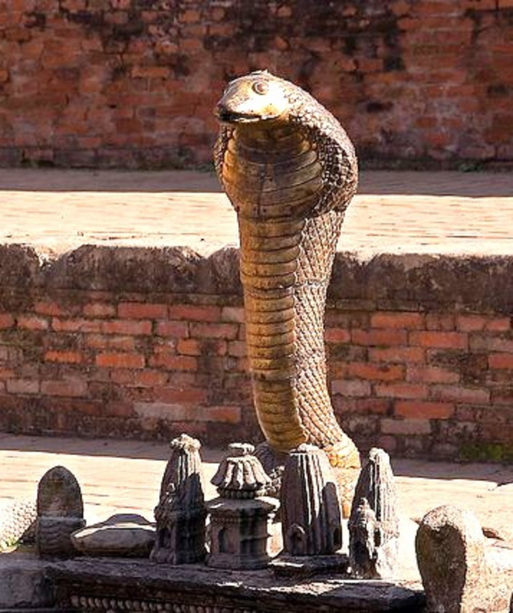 Nagas-Snake in Hindu Mythology