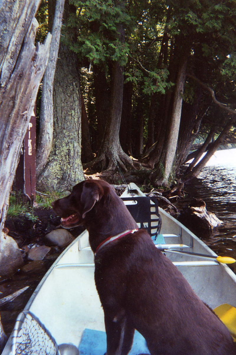 Packing for a Wilderness Canoe Trip