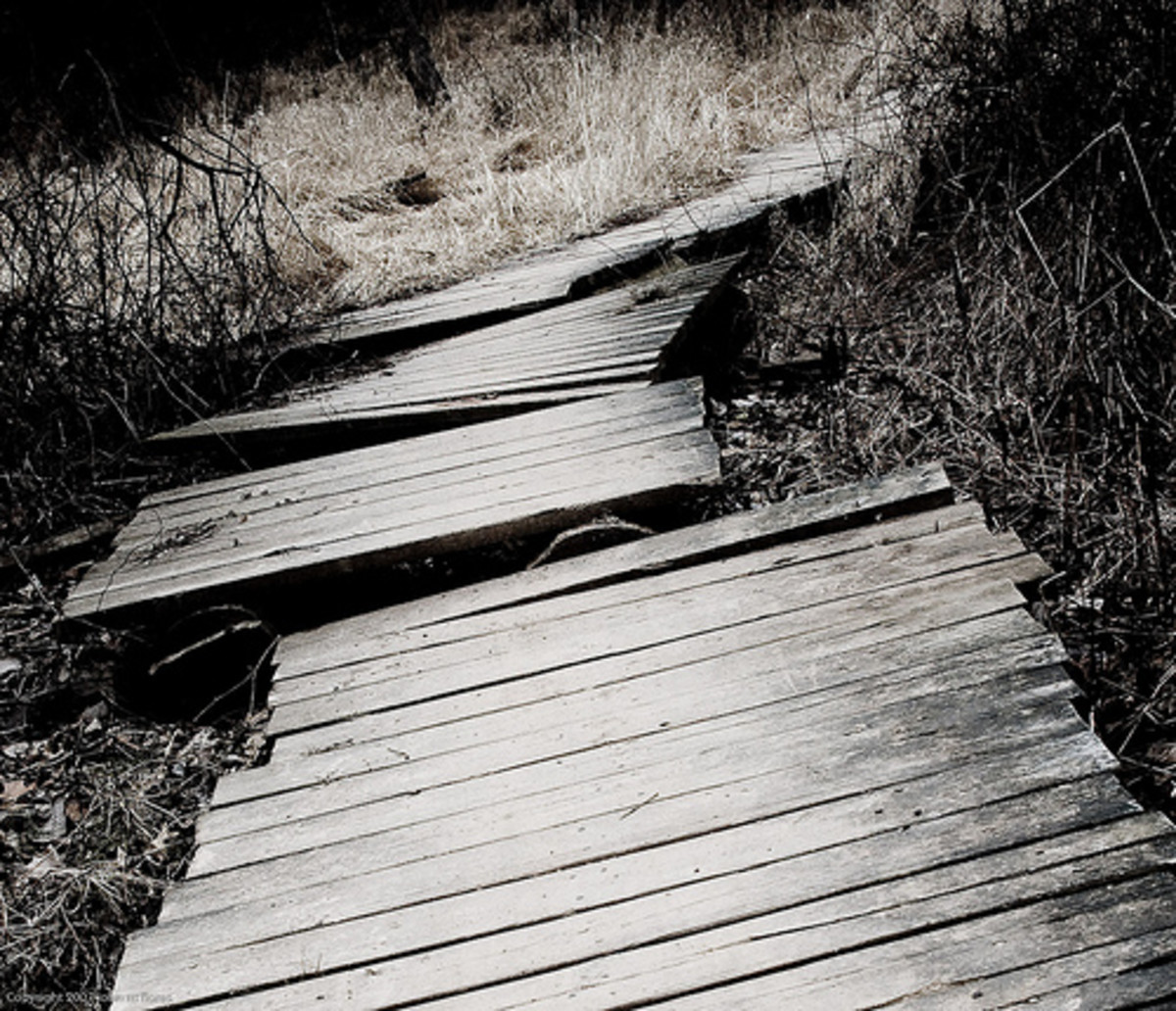 . . . they all end up leaving those who follow disappointed, lost, and broken.