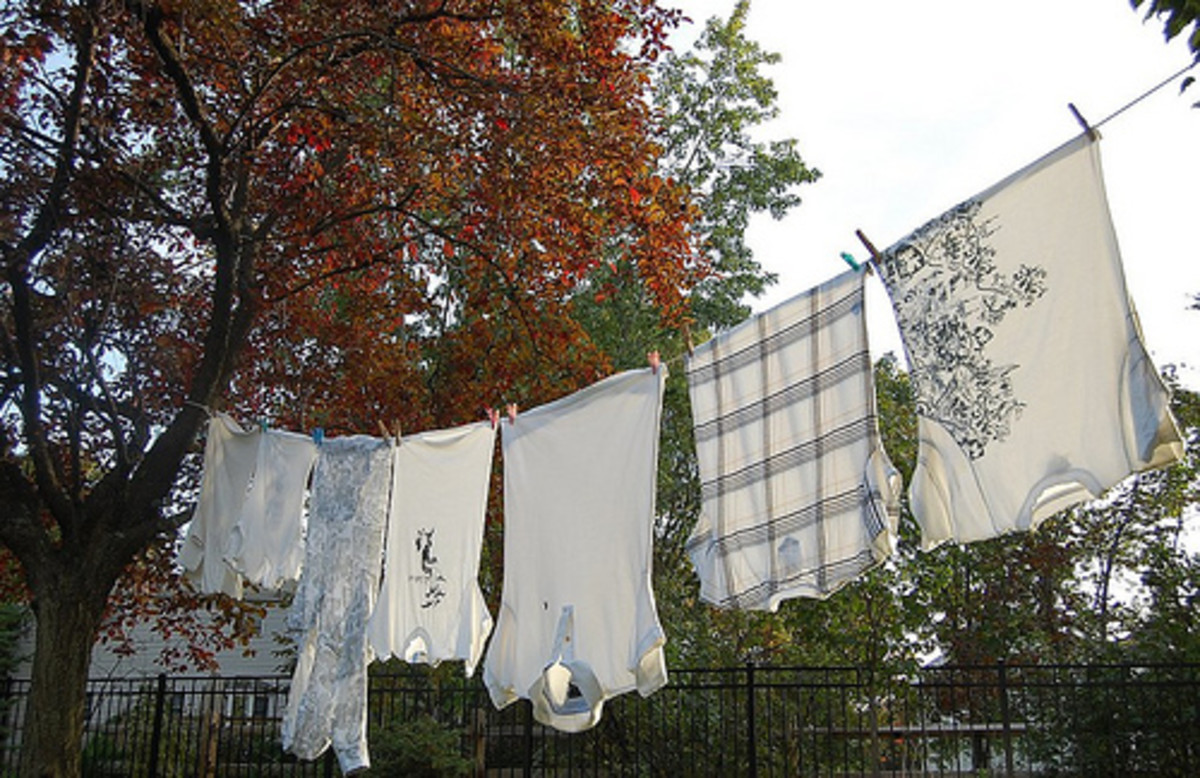 The backyard clothesline is a simple and cost effective way to save money.