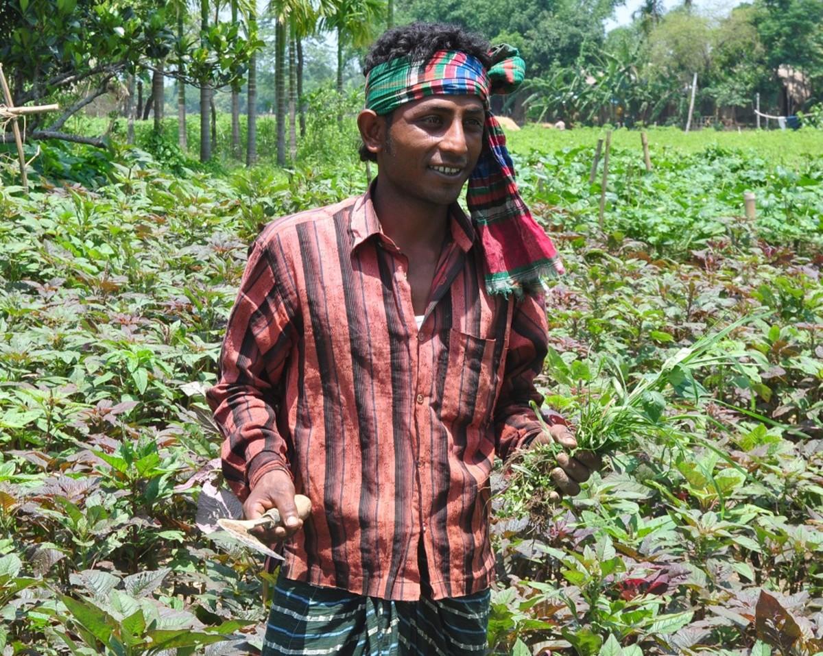 A Bangladeshi farmer with a Gamcha around his head