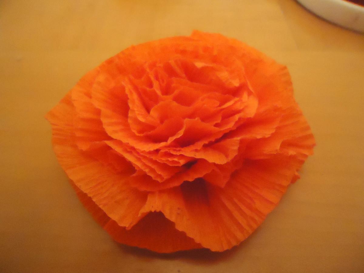 Beautiful, fluffy crepe paper carnation