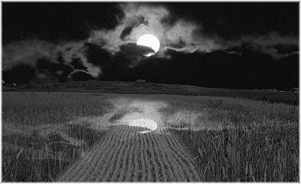 Harvest Moon On the Farm in September.