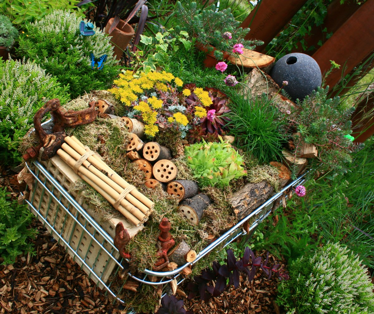 -recycled-container-gardening-ideas