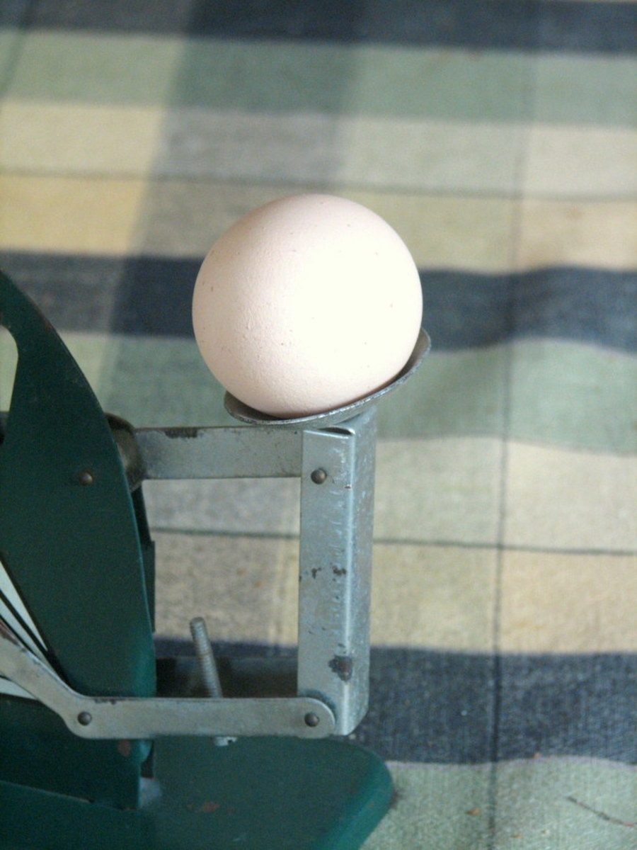vintage-egg-scales