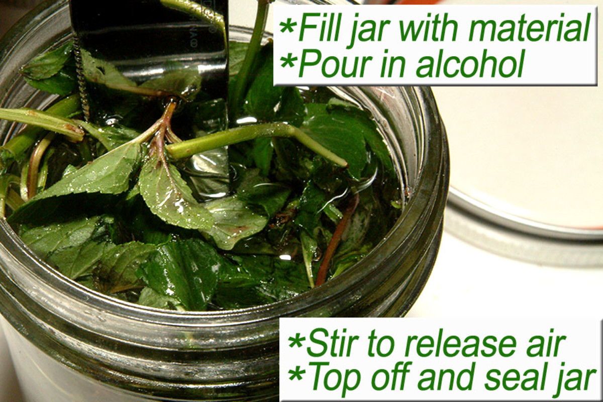 Fill the jar with plant material and alcohol. Stir, top off, and seal.
