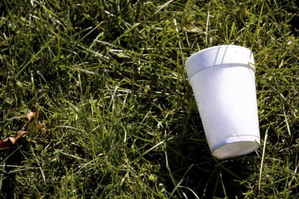 Creative Ideas on How to Reuse Styrofoam