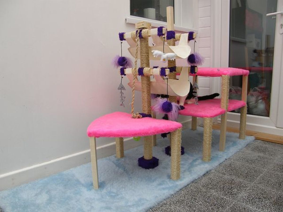 This fun furniture for cats - with built-in scratching posts - was inspired by the shape and design of pirate ships!