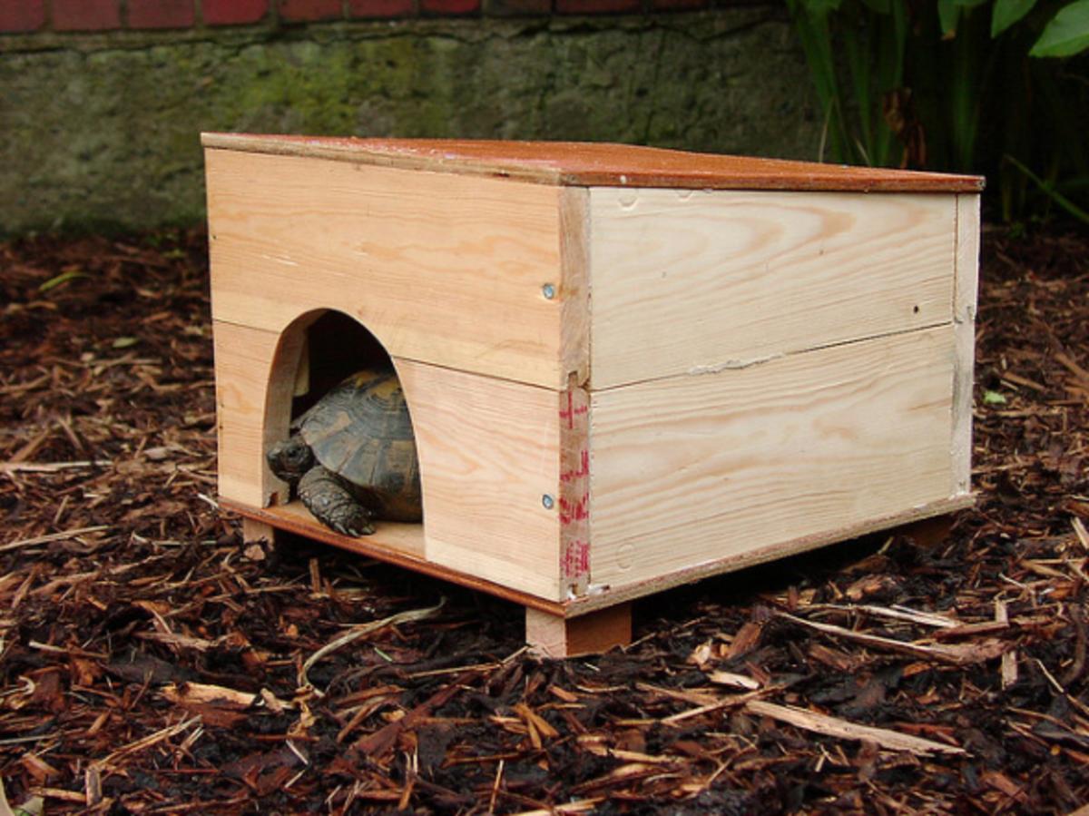 Diy dog beds cat toys homemade pet gifts and fun for Homemade pet beds