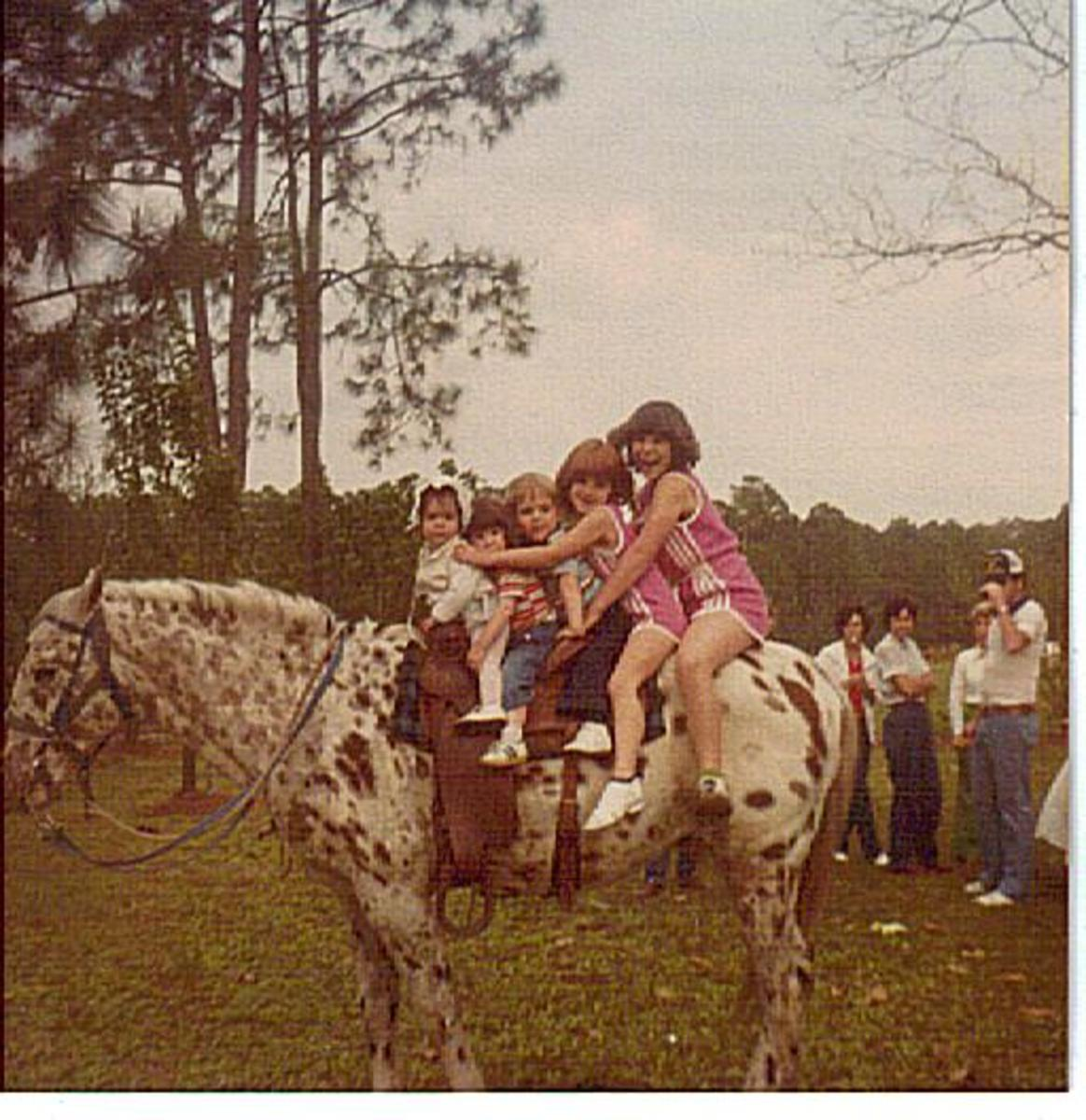 Breeding Appaloosa Horses