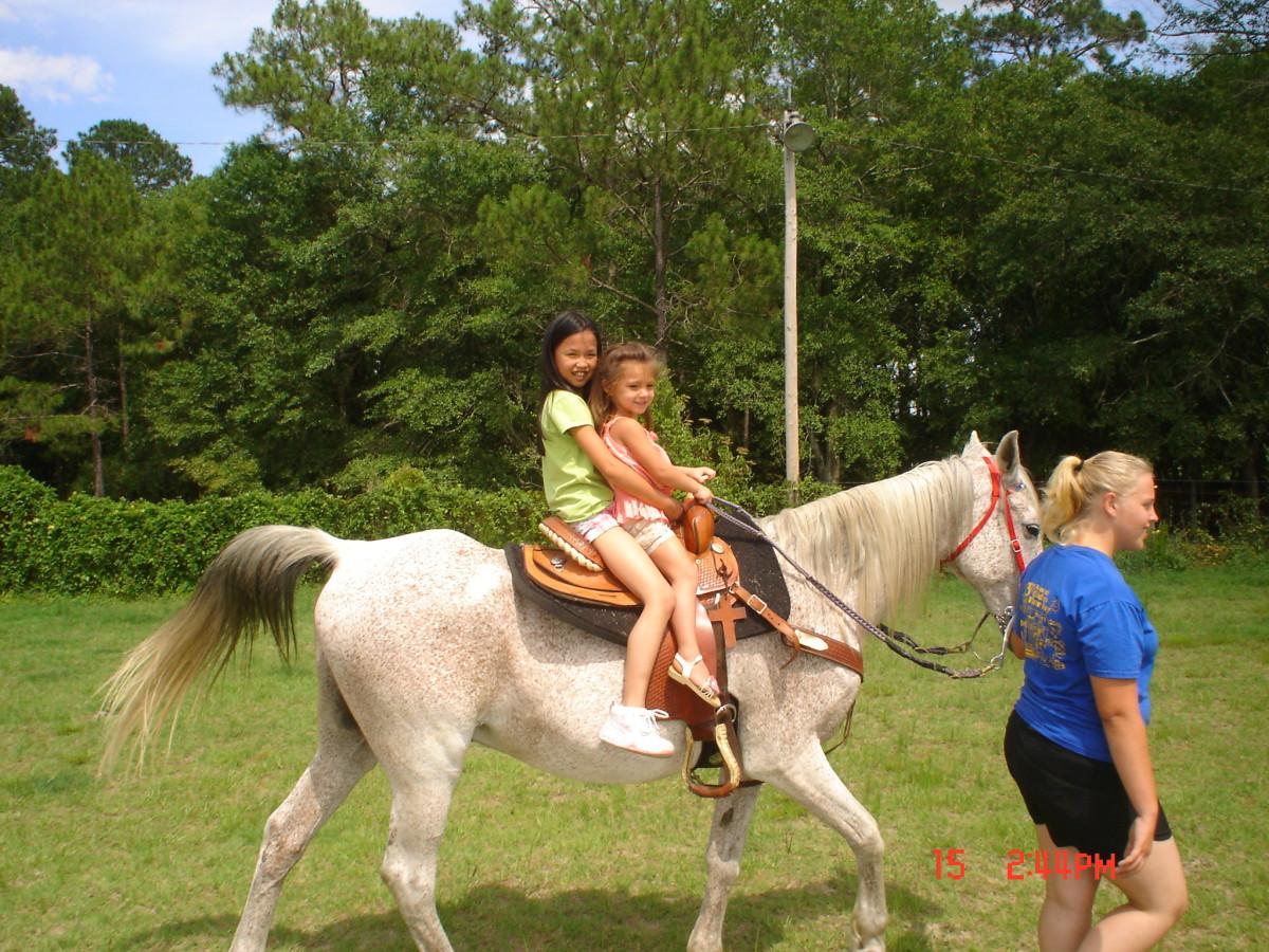 A horse needs and enjoys regular exercise.