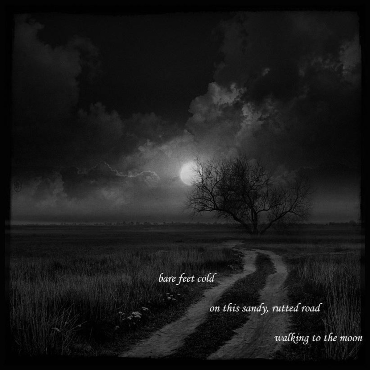 Bare feet cold ~ on this sandy rutted road ~ walking to the moon