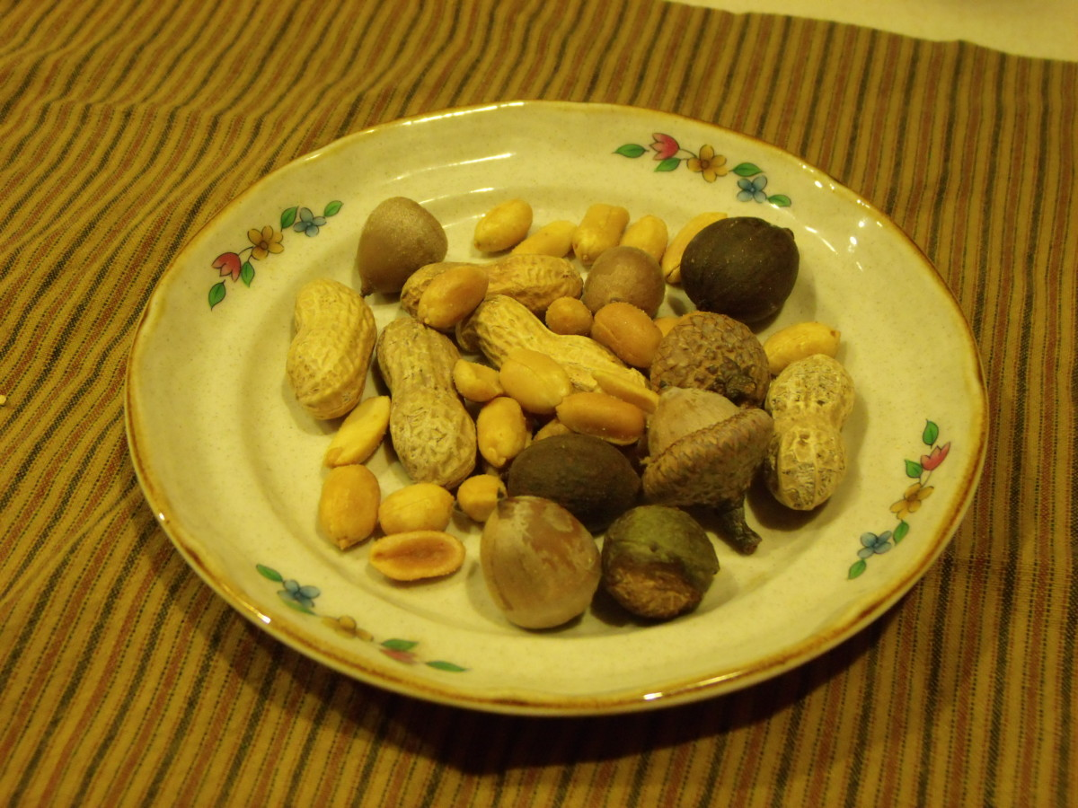 A variety of nuts for the birds can include peanuts, preferably unsalted, hickory nuts and acorns.  Those nuts still in the shell can be placed in a zipper plastic bag wrapped in a kitchen towel.  Grab a hammer and have fun!