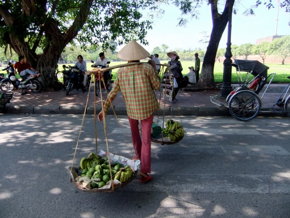 My travel to Vietnam: This man will be lugging the bananas for sales from place to place.